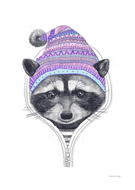 The raccoon in a hood