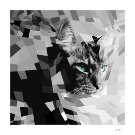 Black & white geometric cat