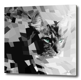 Black & white geometric cat