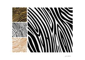 New safari Zebra art : black and white 70s