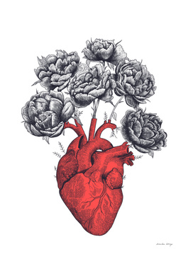 Heart with peonies