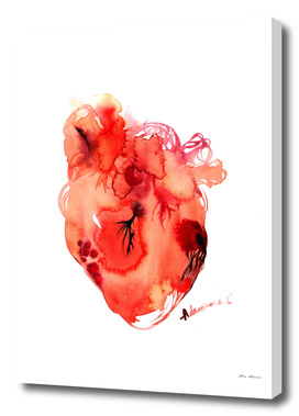 Red Anatomical Heart