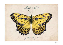 Vintage Hand Drawn Butterfly