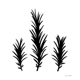 Cute handdrawn Rosemary / black on white
