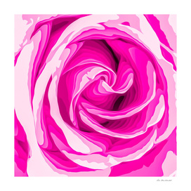 closeup fresh pink rose texture abstract background
