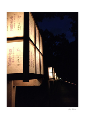 Nara nights