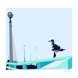 bird with blue sky