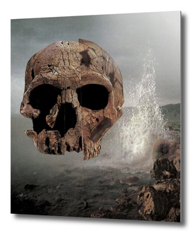 scull collage