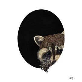 Socially Anxious Raccoon