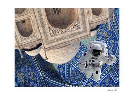 EarthJam Collage (Taj Mahal)