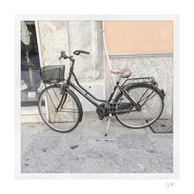 bicicletta 19