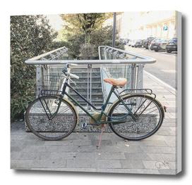 bicicletta 35
