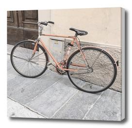 bicicletta 49