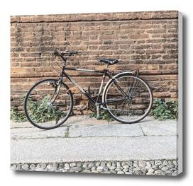 bicicletta 51