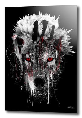 WOLF - RED EYE