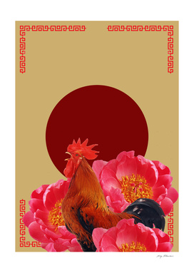 ROOSTER BLOSSOM