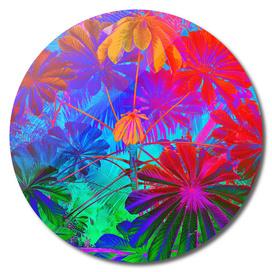 Vibrant Jungle (disc)