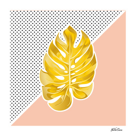 monstera gold