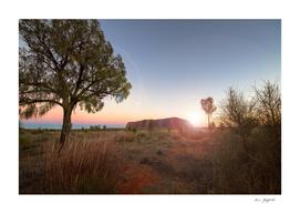 Uluru Central Australia 135 6346