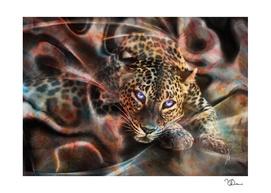 Hypnotic felin