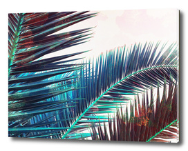Vintage Palm Leaves - Blue