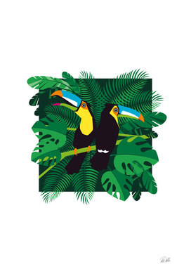 Tropical Summer Toucans