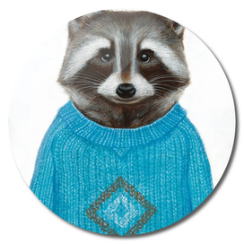 Raccoon wearing a pullover