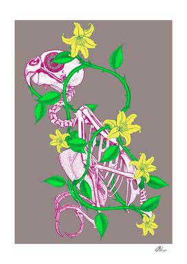 Bird Skeleton wrapped in vine flower