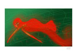 swimming-anguana