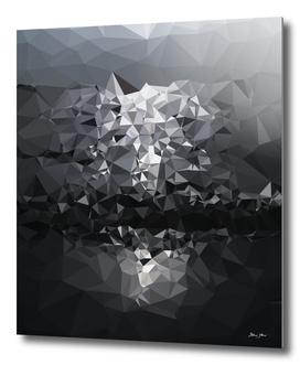 Geometric Glacier