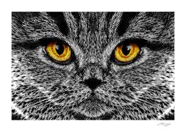 Animal I - Cat Engraved / LE
