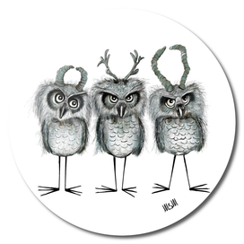 Owls with Horns