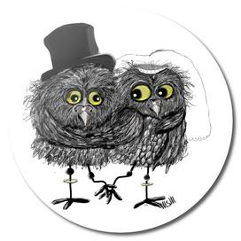 Weddings owls