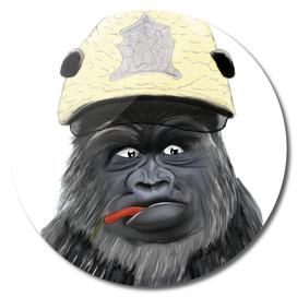 chili Gorilla