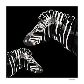 Zebra (black)