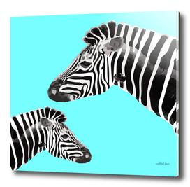 Zebra (turquoise)