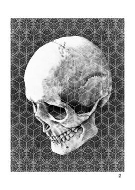Cranial Oblivion Light II