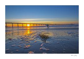 sunset ocean beach  surfing