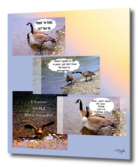 Talking Geese Collage