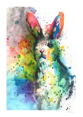 Bunny Splash
