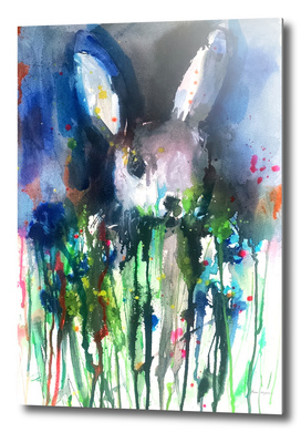 Drip Bunny