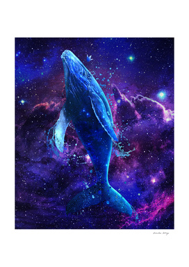 Whale universe