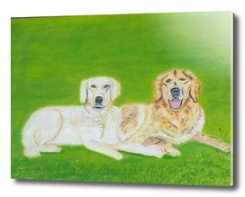 Friends-Doggies