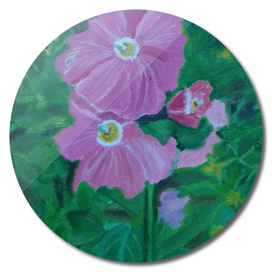 Hollyhock flowers