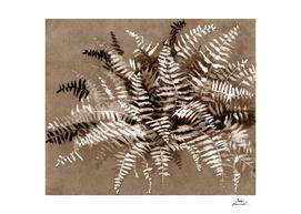 Fern in brown scale