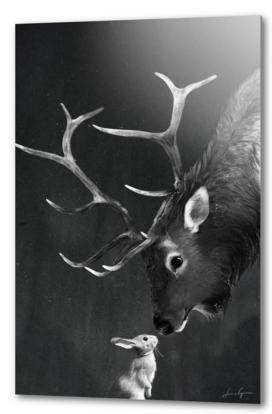 elk and rabbit