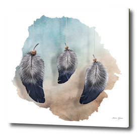 Trio (Feathers)
