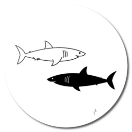 Black and White Sharks