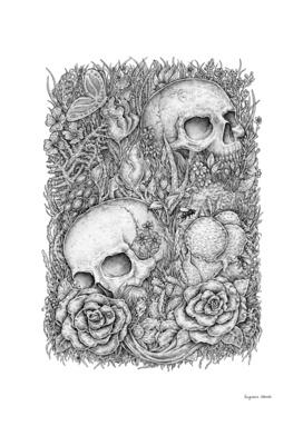 Ice Cream Skulls