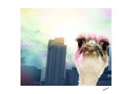 Ostracized In the City